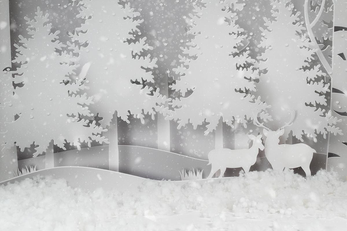 Set di Natale | Mini Sessioni Natale 2020